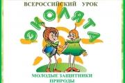 Всероссийский урок  Эколята молодые защитники природы